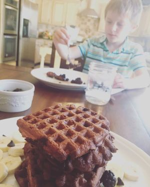 Chocolate Chocolate Chip Waffles with D